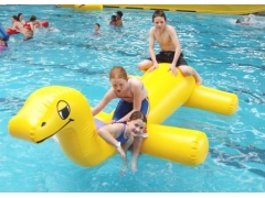 Inflatable Dragon Water Toy