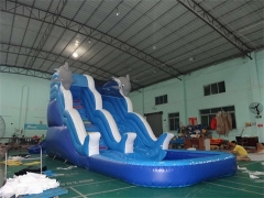 Doubel Drop Dolphin Wave Water Slide