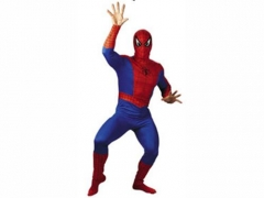 Spiderman Performing Dress