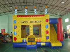 Birthday Party Jumping Castle