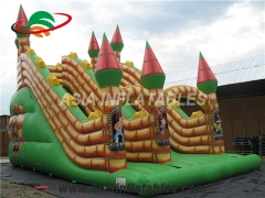 Inflatable Castle Dry Slide