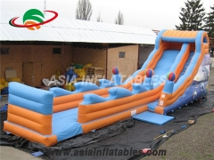Inflatable Dolphin Dry Slide