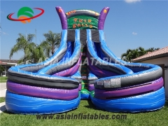 Inflatable Twin Falls Water Slide