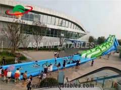 Giant Inflatable Green City Water Slide