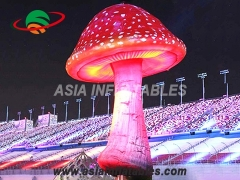 Giant outdoor inflatable mushroom