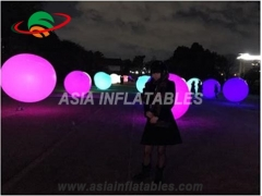 Inflatable Advertising Balloons for garden