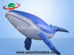 Giant blue whale inflatable