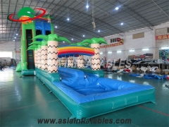 Tropical Storm Inflatable Water Slide
