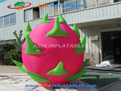 Inflatable Dragon Fruit