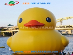 Purchase Custom Cute Inflatable Duck Cartoon For Pool Floating